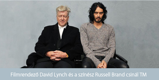 Brand and Lynch